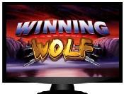 Winning Wolf Pokies Slots
